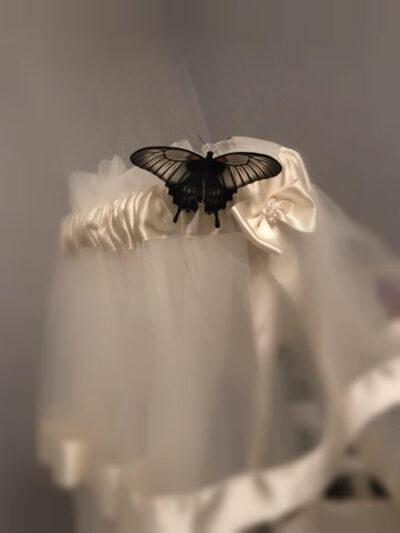 Papilio Memnon – Папирусник Мемнон на детской кроватке