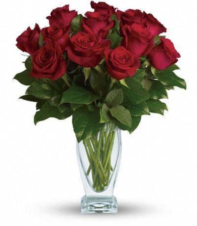 розы красные букет