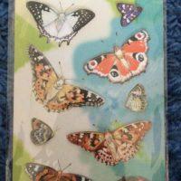 Набор наклеек с бабочками №1
