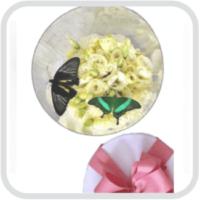 Подарочная коробочка с цветами