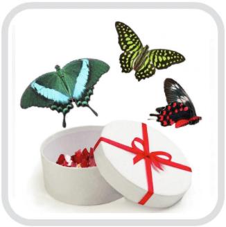 Праздничный салют из бабочек