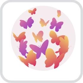 Салют из тропических бабочек
