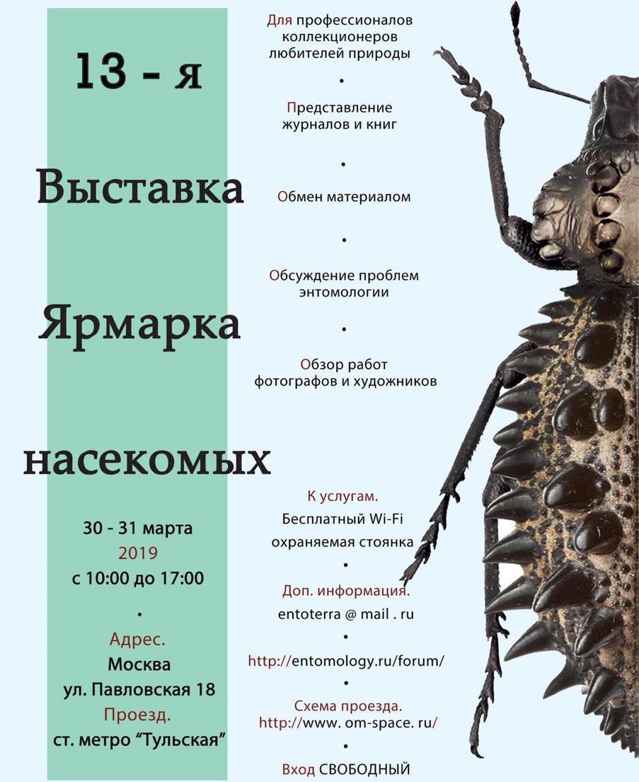 13-я энтомологическая выставка, ярмарка бабочек в Москве