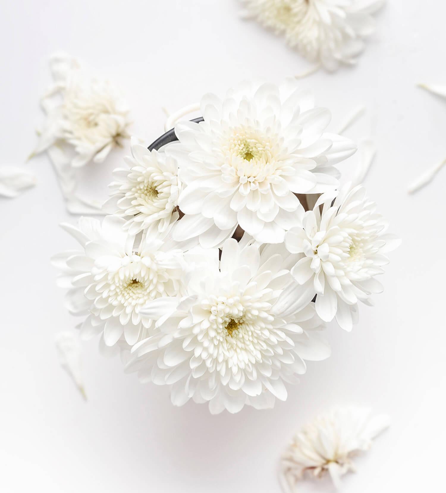 Флористика, цветы и букеты